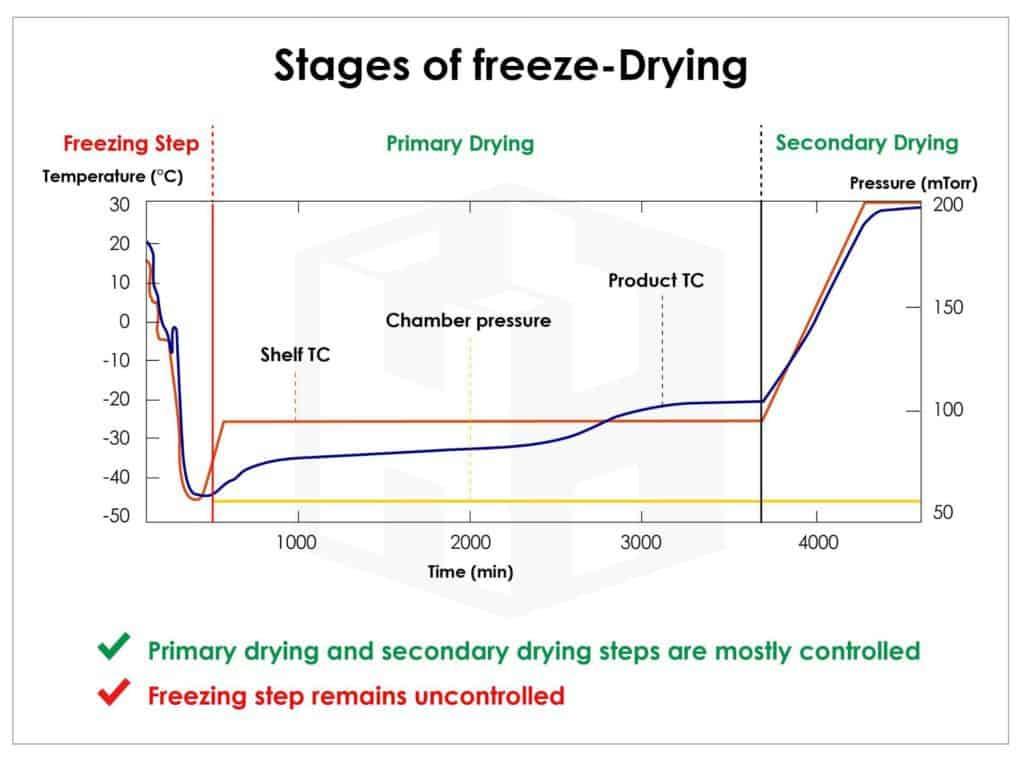 ทำความรู้จักกับการทำแห้งแบบแช่เยือกแข็ง (Freeze Dry)